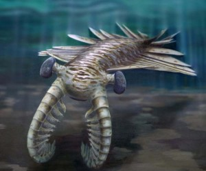 anomalocaris-500m-year-old-predator-1
