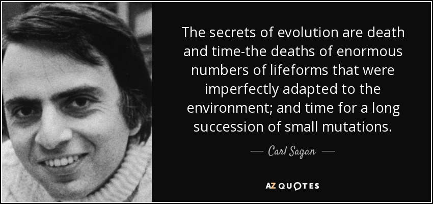 quote-the-secrets-of-evolution-are-death-and-time-the-deaths-of-enormous-numbers-of-lifeforms-carl-sagan-53-84-14