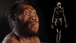 150910-homo-naledi-discovery-vin
