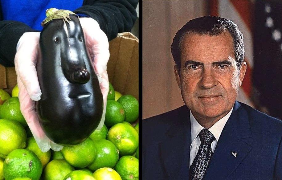 Nixon Eggplant