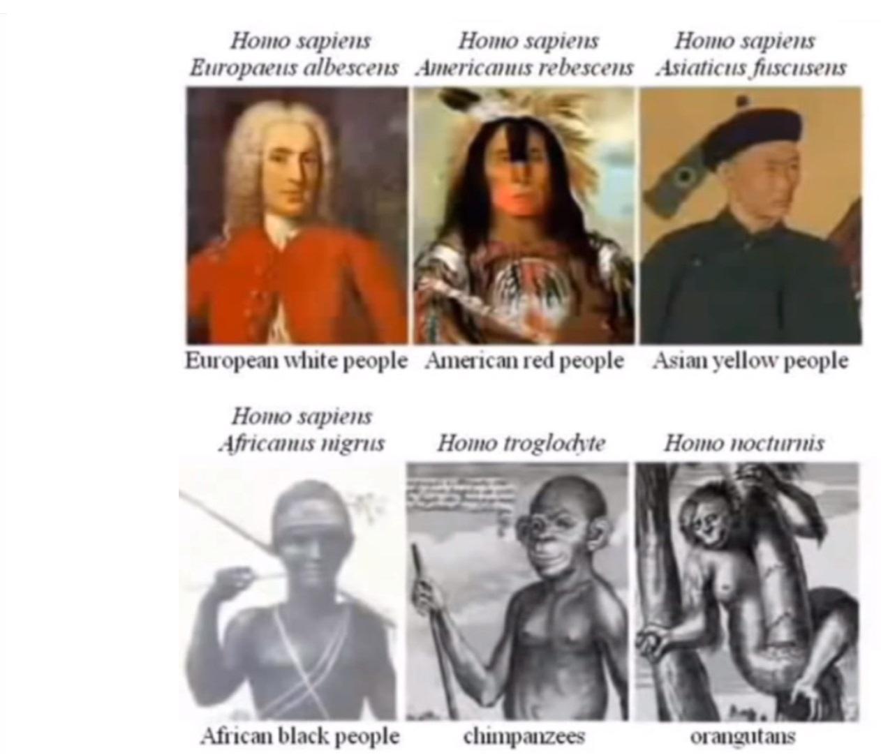 লিনিয়াসের ৬ প্রজাতি